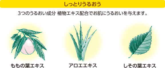 しっとりうるおう 3つのうるおい成分 植物エキス配合でお肌にうるおいを与えます