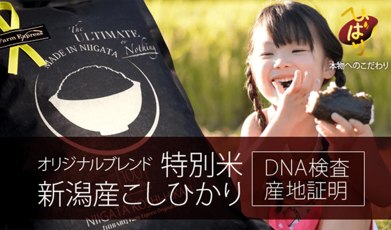 オリジナルブレンド 特別米 新潟産こしひかり DNA検査産地証明