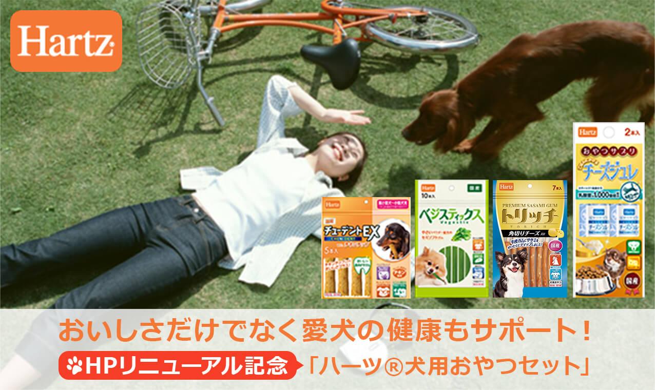 おいしさだけでなく愛犬の健康もサポート!ハーツ®の犬用おやつ