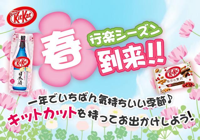 桜前線 今年のお花見は、キットカットで盛り上がろう!