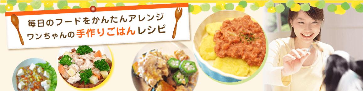 毎日のフードをかんたんアレンジ ワンちゃんの手作りごはんレシピ
