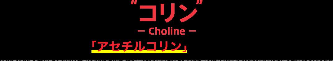 コリン − Choline − 神経伝達物質「アセチルコリン」のもとになる成分です。