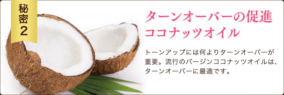 秘密2 ターンオーバーの促進 ココナッツオイル