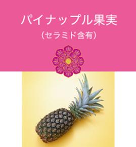 パイナップル果実