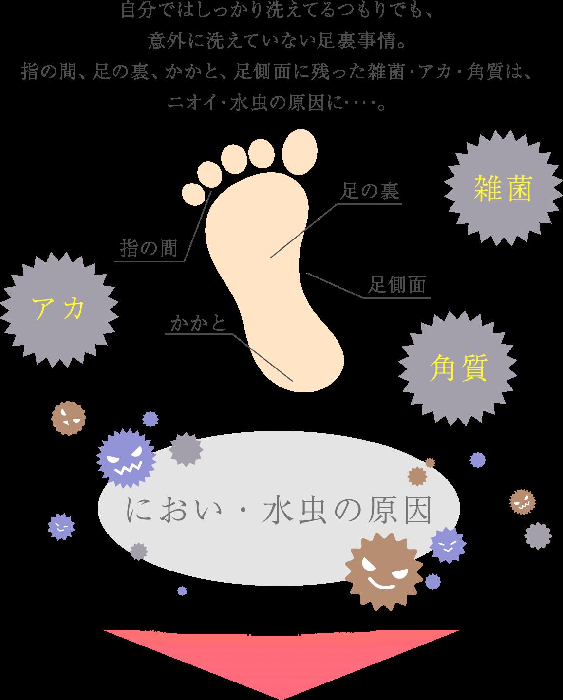 自分ではしっかり洗えてるつもりでも、意外に洗えていない足裏事情。指の間、足の裏、かかと、足側面に残った雑菌・アカ・角質は、ニオイ・水虫の原因に‥‥。