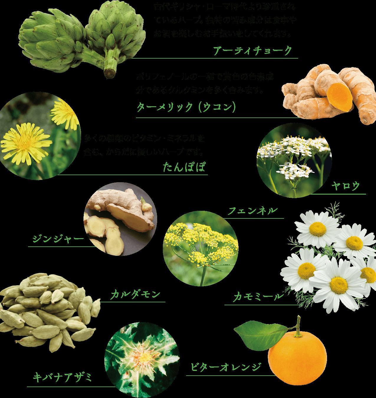 ドイツで厳選された10種類のハーブ