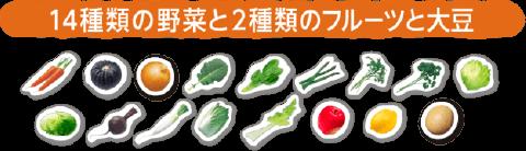 14種類の野菜と2種類のフルーツと大豆