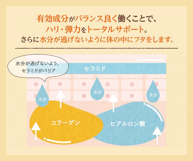 有効成分がバランス良く働くことで、ハリ・弾力をトータルサポート。さらに水分が逃げないように体の中にフタをします。