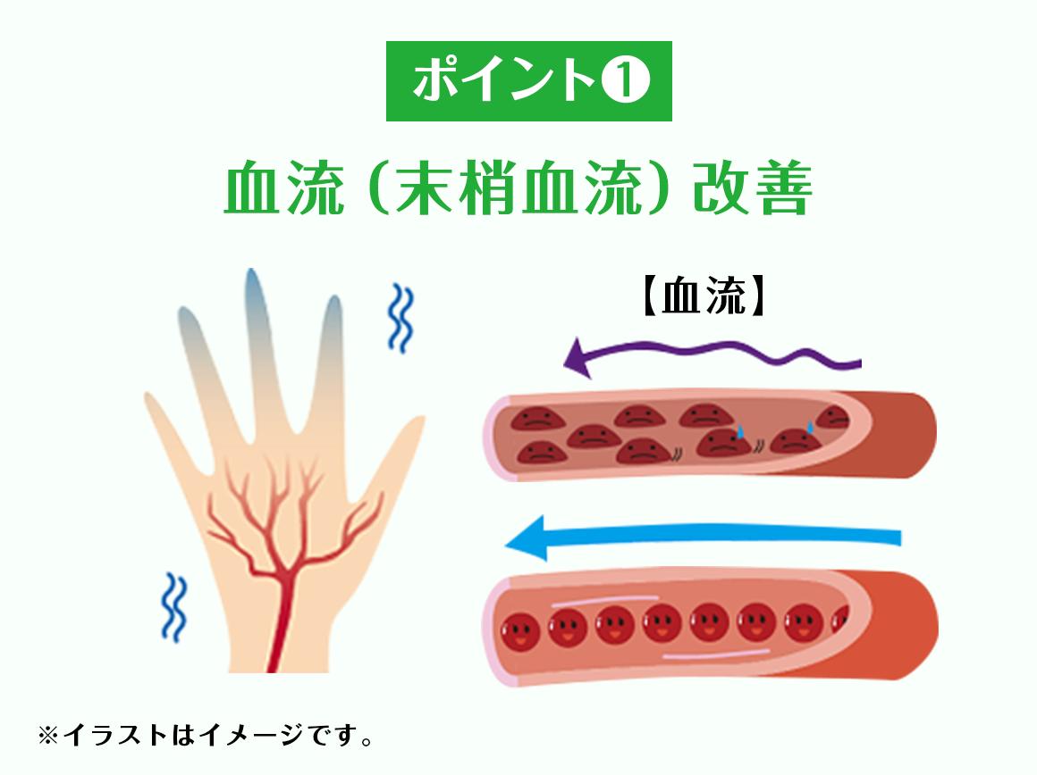 ポイント1 血流(末梢血流)改善