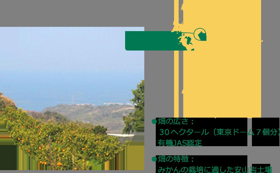 鹿島みかん村は、佐賀県鹿島市、干満の差・日本一の雄大な有明海を見下ろす多良山系の自然豊かな山間の地にあります。