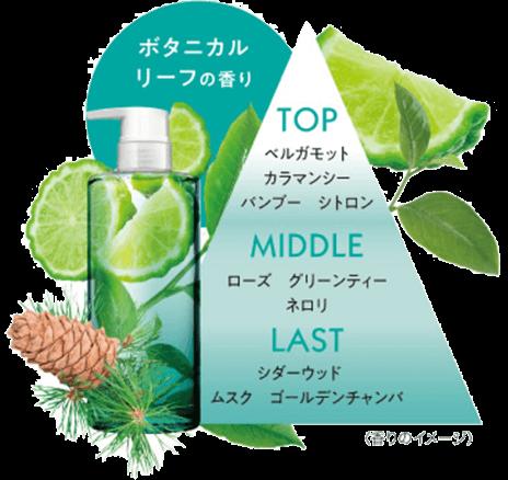 ボタニカルリーフの香り TOP MIDDLE LAST