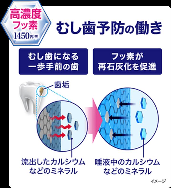 高濃度フッ素 1450mg むし歯予防の働き イメージ図