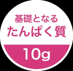 基礎となるたんぱく質 10g