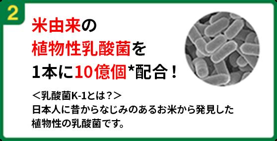 米由来の 植物性乳酸菌を 1本に10億個*配合!<乳酸菌K-1とは?> 日本人に昔からなじみのあるお米から発見した 植物性の乳酸菌です。