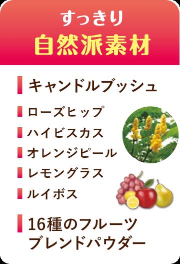 すっきり自然派素材 キャンドルブッシュ ローズヒップ ハイビスカス オレンジピール レモングラス ルイボス 16種のフルーツブレンドパウダー