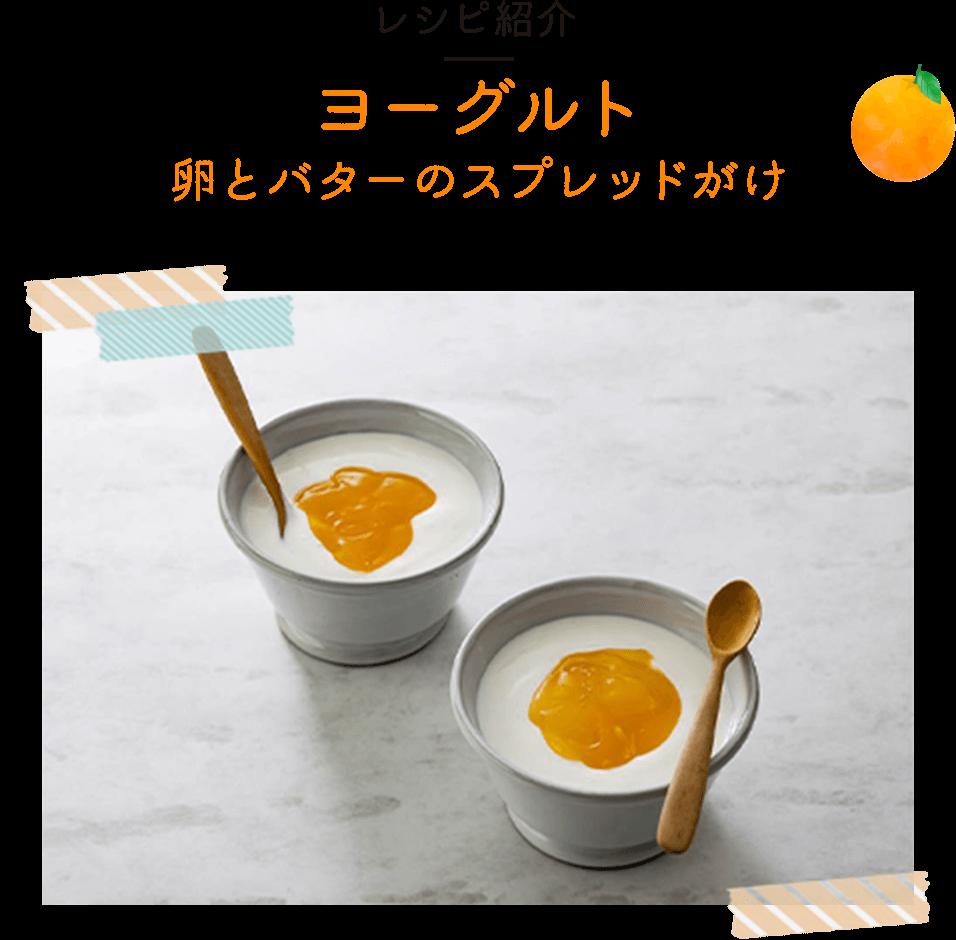 レシピ紹介 ヨーグルト卵とバターのスプレッドがけ