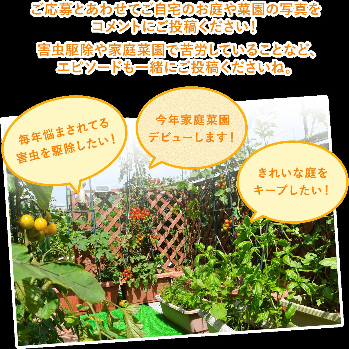 ご応募とあわせてご自宅のお庭や菜園の写真をコメントにご投稿ください! 害虫駆除や家庭菜園で苦労していることなど、エピソードも一緒にご投稿くださいね。