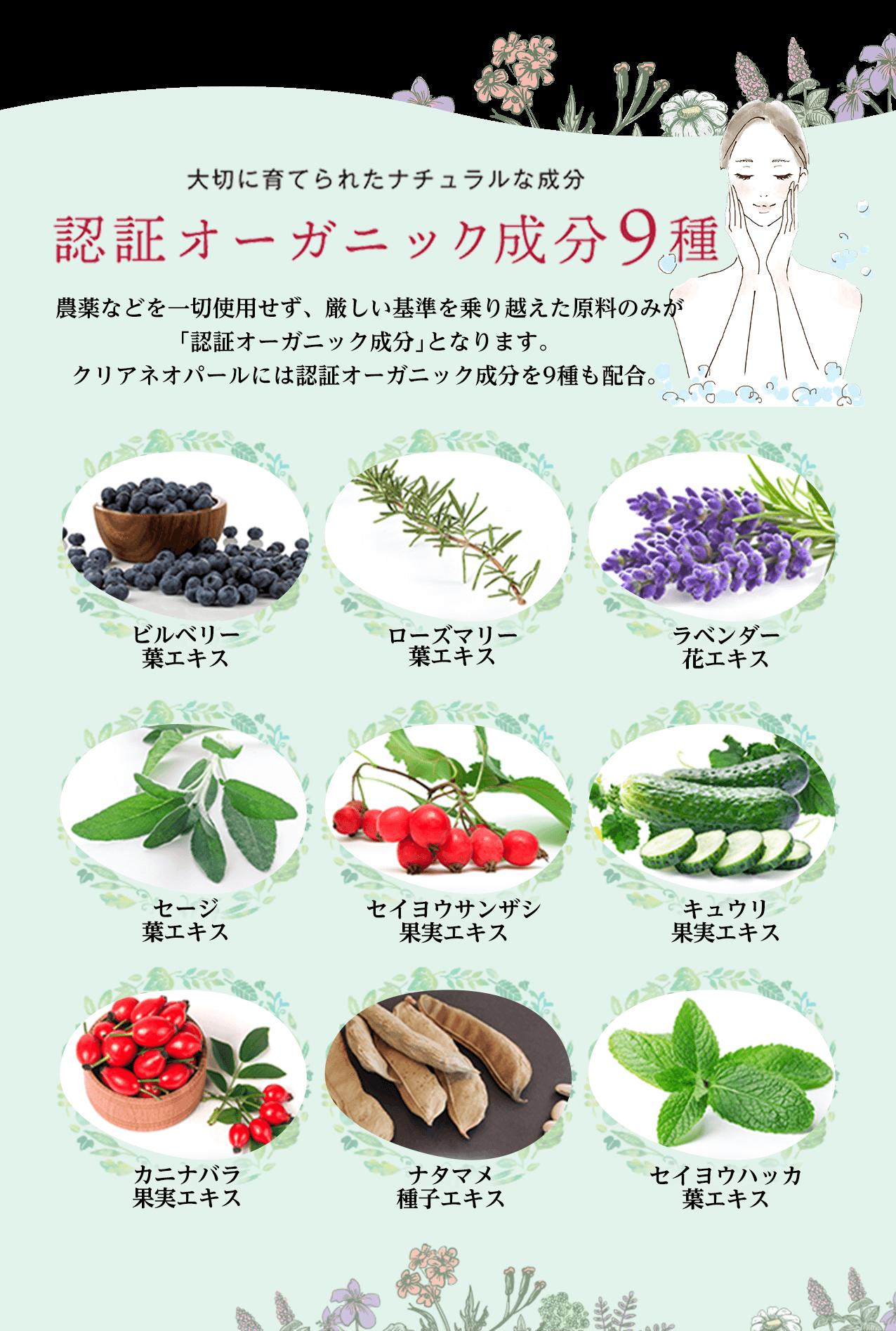 大切に育てられたナチュラルな成分認証オーガニック成分9種。農薬などを一切使用せず、厳しい基準を乗り越えた原料のみが認証オーガニック成分となります。クリアネオパールには認証オーガニック成分を9種も配合。ビルベリー葉エキス・ローズマリー葉エキス・ラベンダー花エキス・セージ葉エキス・セイヨウセンザシ果実エキス・キュウリ果実エキス・カニナバラ果実エキス・ナタマメ種エキス・セイヨウハッカ葉エキス