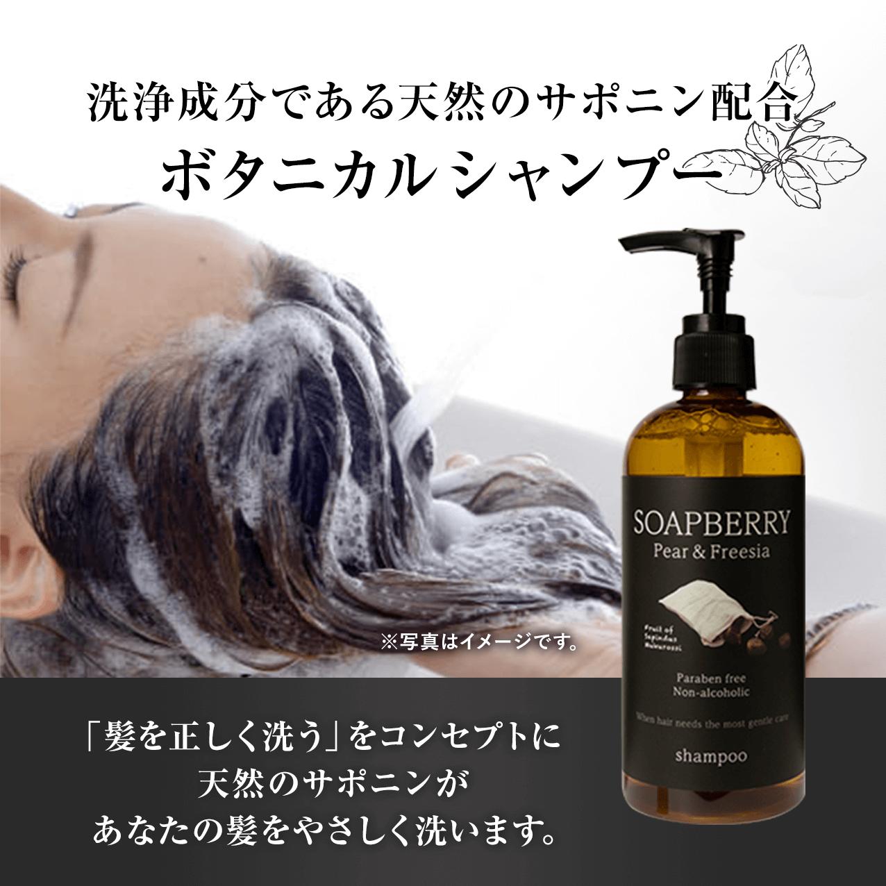 洗浄成分である天然のサポニン配合ボタニカルシャンプー           「髪を正しく洗う」をコンセプトに天然のサポニンがあなたの髪を優しく洗います。