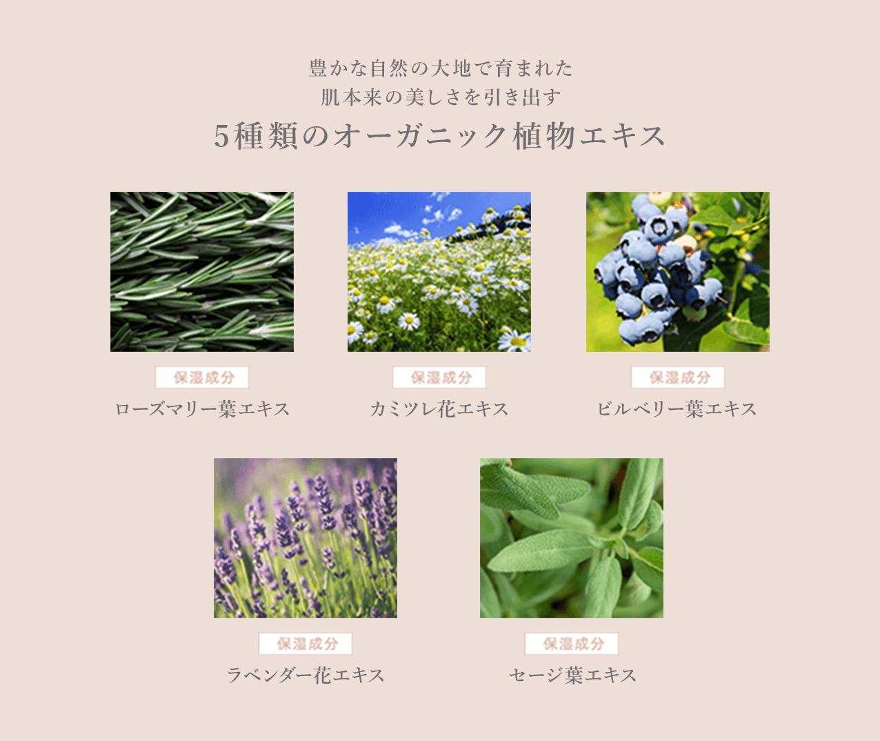 豊かな自然の大地で育まれた肌本来の美しさを引き出す5種類のオーガニック植物エキス