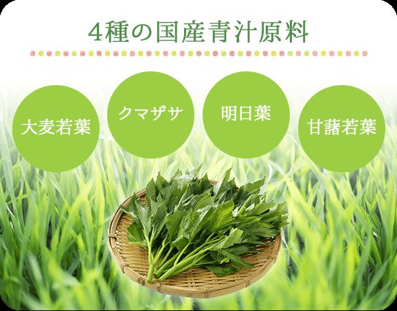 4種の国産青汁原料  大麦若葉, クマザサ, 明日葉, 甘藷若葉