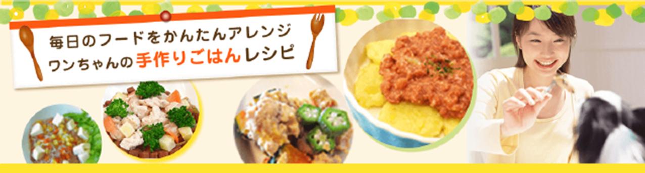 毎日のフードをかんたんにアレンジ!ワンちゃんの手作りごはんレシピ