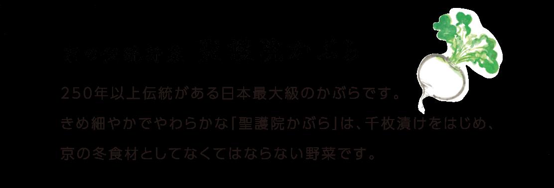京の伝統野菜 聖護院かぶら 250年以上伝統がある日本最大級のかぶらです。きめ細やかでやわらかな「聖護院かぶら」は、千枚漬けをはじめ、京の冬食材としてなくてはならない野菜です。