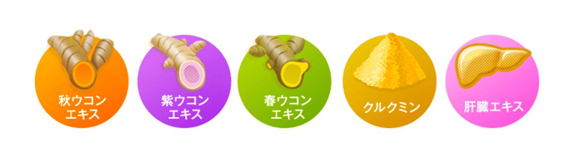 秋ウコンエキス、紫ウコンエキス、春ウコンエキス、クルクミン、肝臓エキス