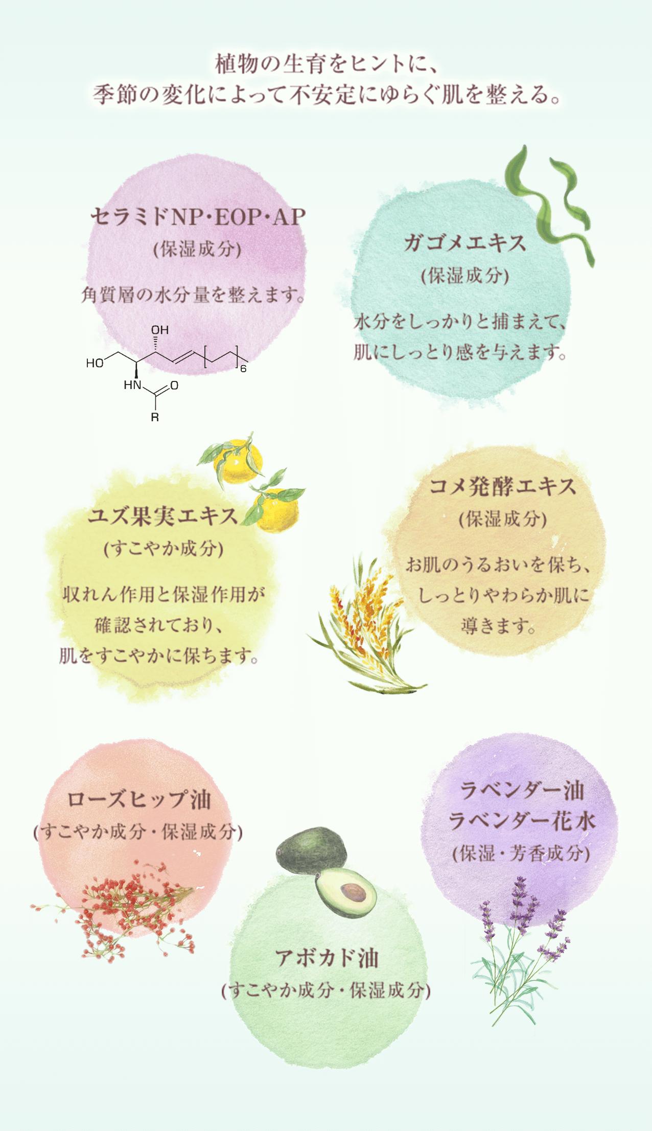 植物の生育をヒントに、 季節の変化によって不安定にゆらぐ肌を整える。 セラミドNP・EOP・AP (保湿成分)  角質層の水分量を整えます。 ガゴメエキス (保湿成分)  水分をしっかりと捕まえて、肌にしっとり感を与えます。 ユズ果実エキス (すこやか成分)  収れん作用と保湿作用が確認されており、肌をすこやかに保ちます。 コメ発酵エキス (保湿成分)  お肌のうるおいを保ち、しっとりやわらか肌に導きます。 ローズヒップ油 (すこやか成分・保湿成分) アボカド油 (すこやか成分・保湿成分) ラベンダー油 ラベンダー花水 (保湿・芳香成分)