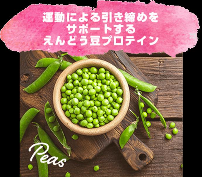 運動による引き締めをサポートするえんどう豆プロテイン