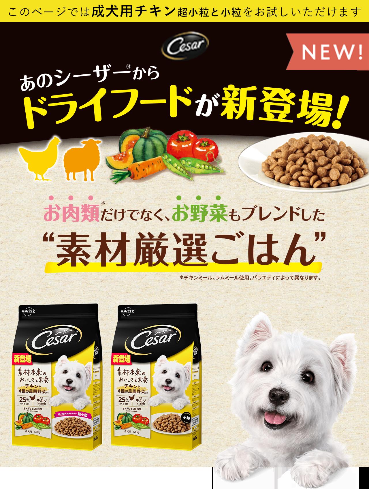 Cesar 厳選素材でおいしさと栄養を このページでは成犬用チキンをお試しいただけます
