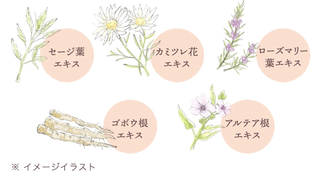 5種の植物エキス イメージ
