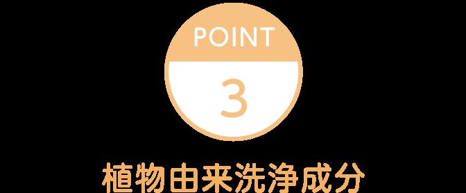 Point3 植物由来洗浄成分