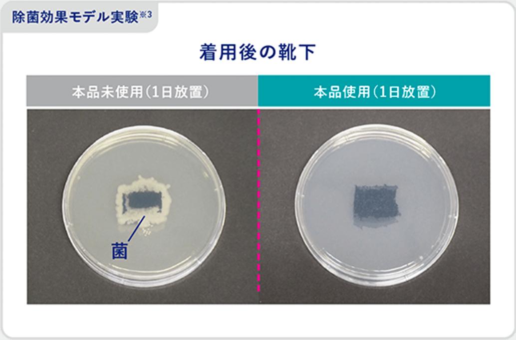 除菌効果モデル実験