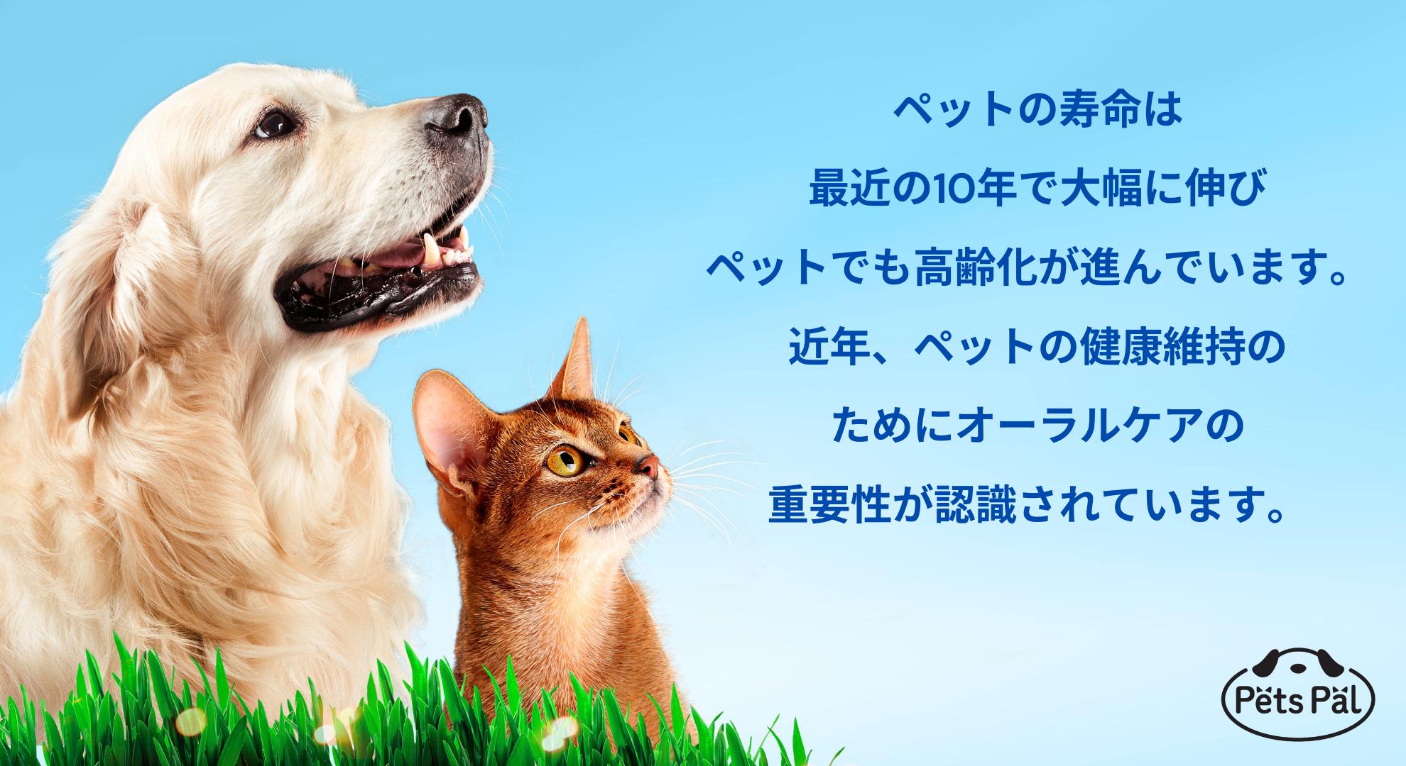 ペットの寿命は最近10年で大幅に伸びペットでも高齢化が進んでいます。近年、ペットの健康寿命のためにオーラルケアの重要性が認識されています。