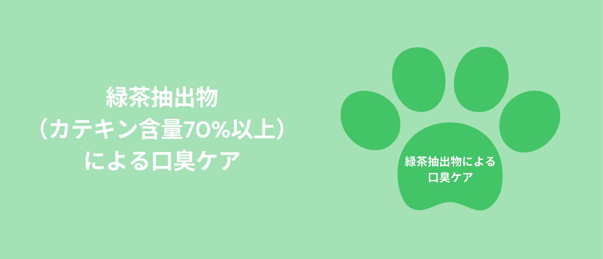 緑茶抽出物(カテキン含有70%以上)による口臭ケア