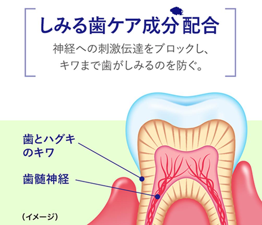 しみる歯ケア成分配合