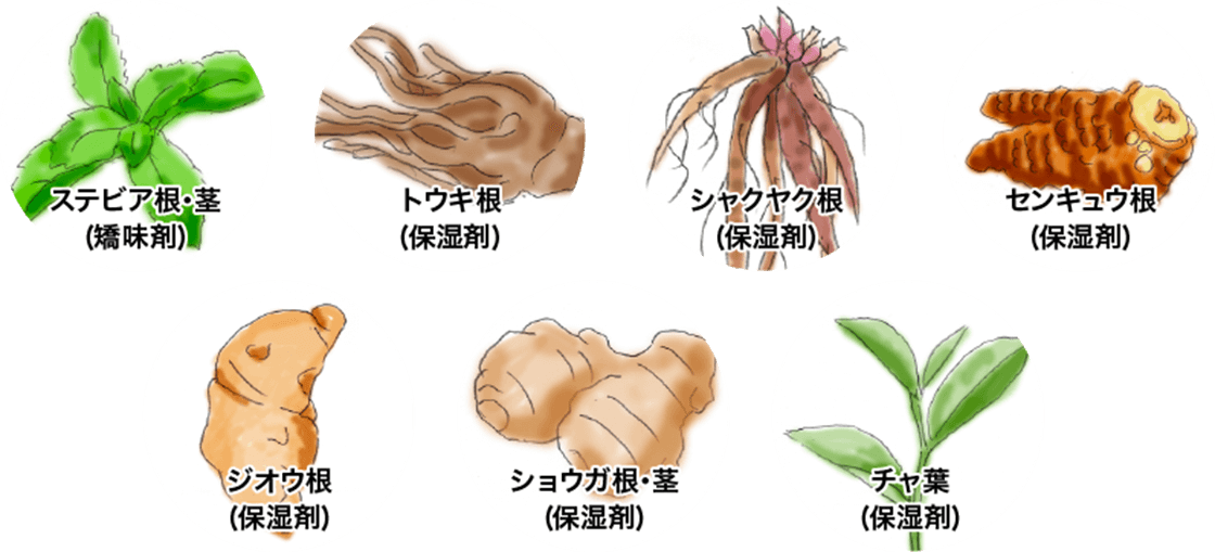 ステビア根・茎、トウキ根、シャクヤク根、センキュウ根、ジオウ根、ショウガ根・茎、チャ葉