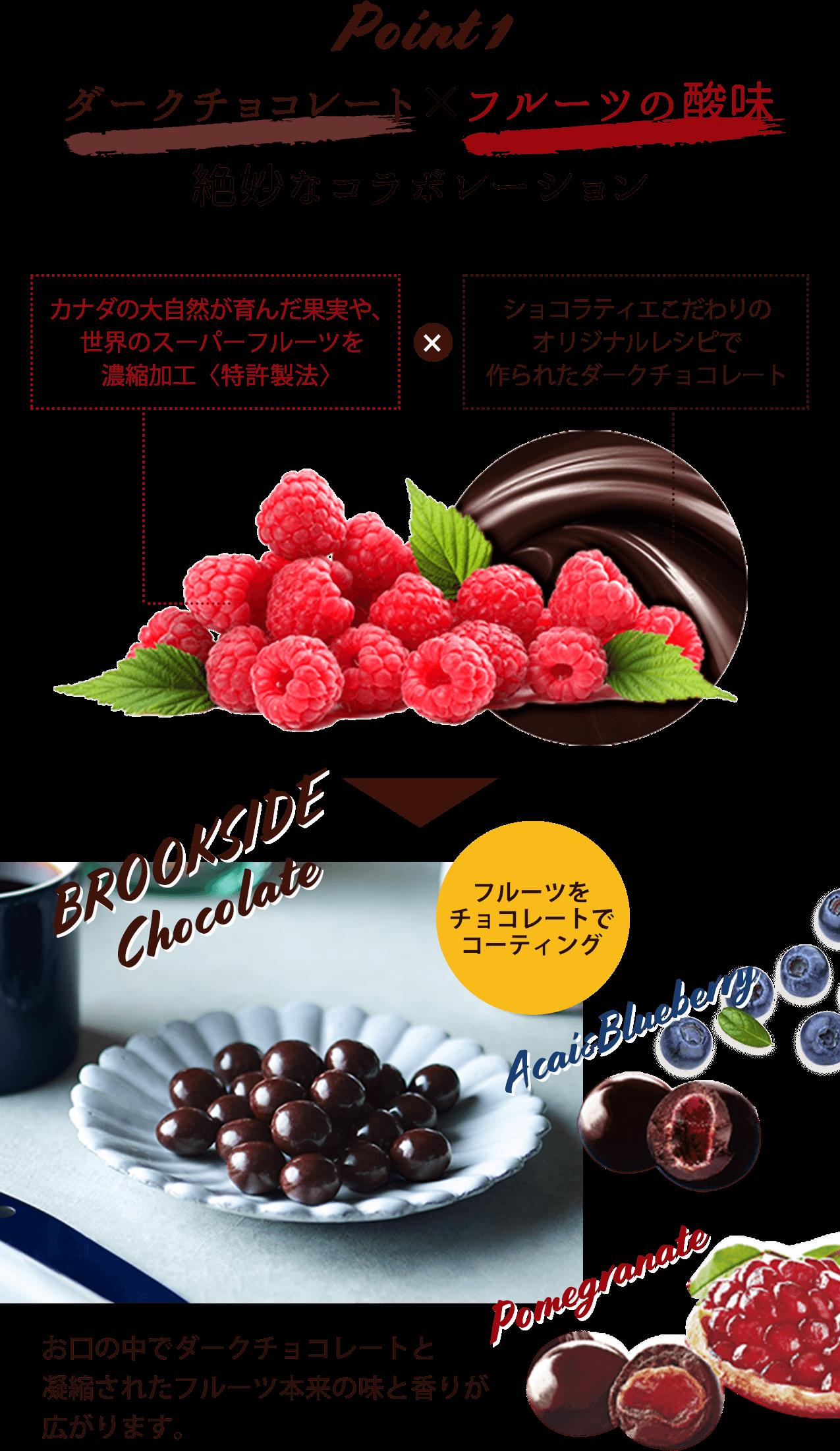 Point_1 ダークチョコレート×フルーツの酸味 絶妙なコラボレーション