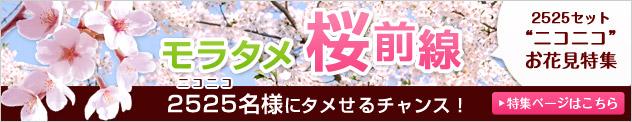 モラタメ桜前線 ニコニコお花見特集 2525名様にタメせるチャンス!