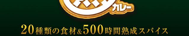 20種類の食材&500時間熟成スパイス