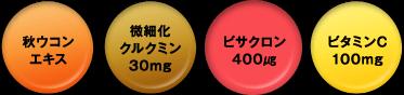 秋ウコンエキス 微細化クルクミン30mg ビサクロン400μg ビタミンC100mg