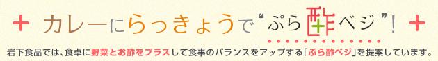 カレーにらっきょうで「ぷら酢ベジ」!岩下食品では、食卓に野菜とお酢をプラスして栄養のバランスを考える「ぷら酢ベジ」を提案しています。