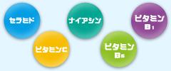 セラミド ビタミンC ナイアシン ビタミンB6 ビタミンB1