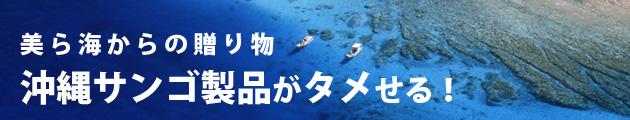 美ら海からの贈り物 沖縄サンゴ製品がタメせる!