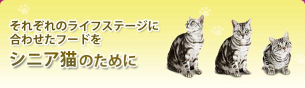 それぞれのライフステージに合わせたフードをシニア猫のために