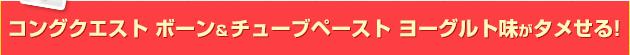 コングクエスト ボーン & チューブペースト ヨーグルト味がタメせる!