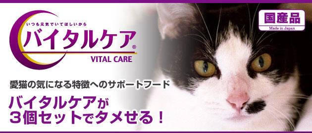 国産品 愛猫の気になる特徴のへのサポートフード バイタルケア バイタルケアが3個セットでタメせる!