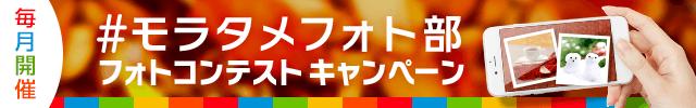 モラタメフォト部11月SPバナー