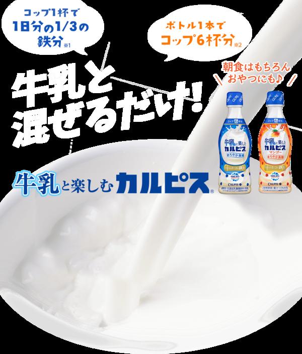 牛乳と楽しむ「カルピス」 8本
